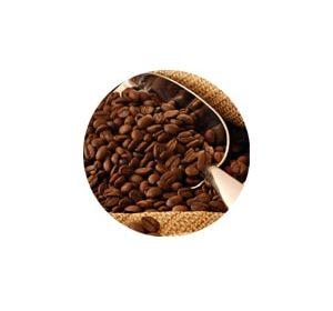 настройка рекламы для поставщика кофе